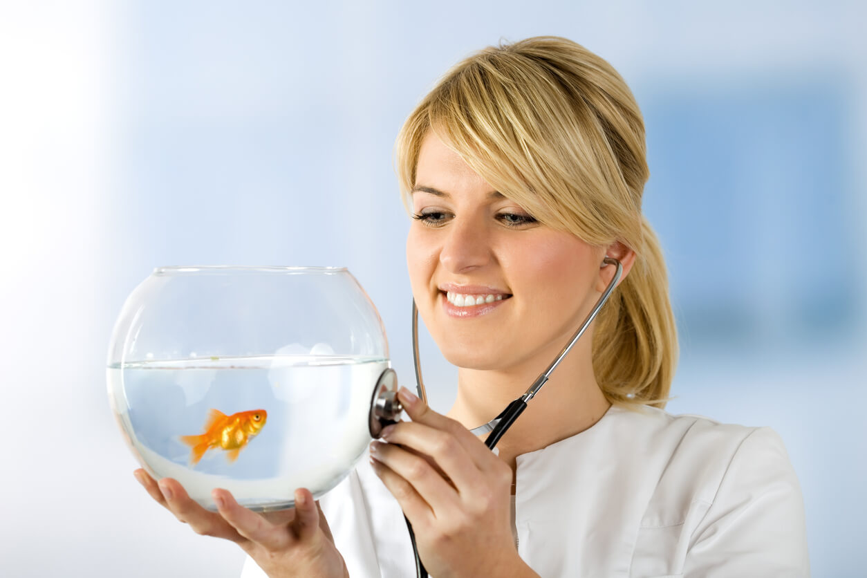 Fish Doxycycline: Antibiotics for Your Aquatic Amigo