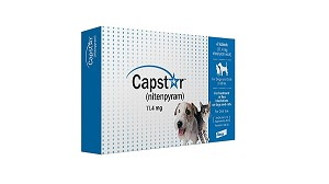 Capstar flea tablets kill fleas on dogs within 4 hours of application of this flea tablet, and 6 hours for cats