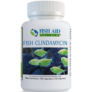 Fish Aid Clindamycin - 150 mg. - 100 capsules