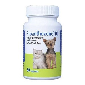Proanthozone is a potent antioxidant formulation that provides liver and kidney function support