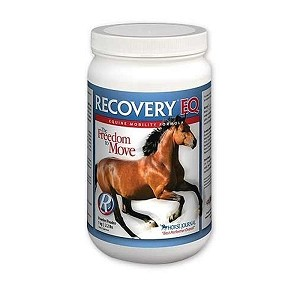 Recovery EQ Beyond Pain Relief for Horses - 2.2 lb.