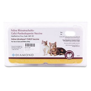 Given intranasal, this unique feline vaccine covers Feline Distemper, Rhinotracheitis and Calici, without the risks of injectable vaccines